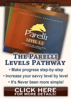 Levels Pathway